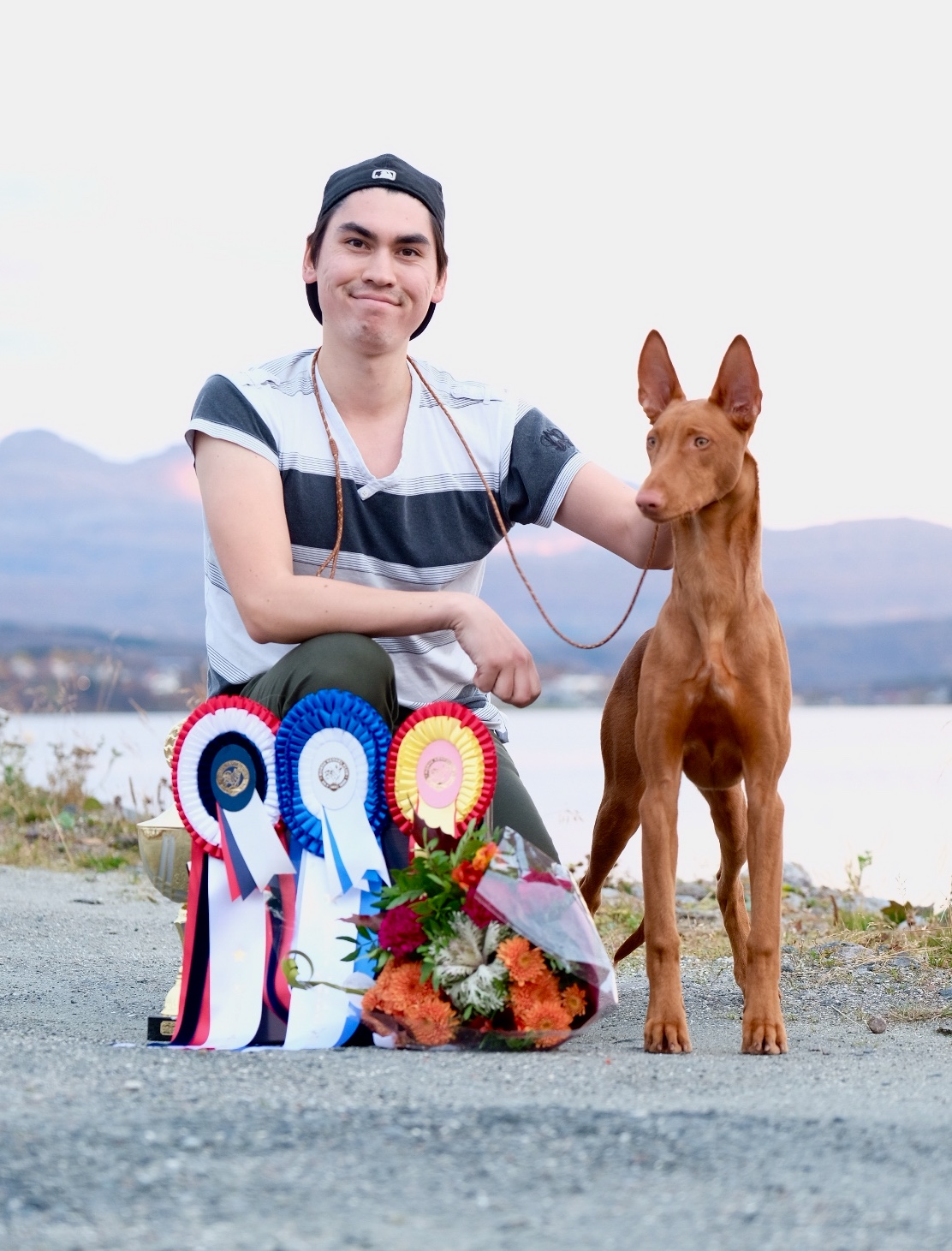 Sandy Best In Show Puppy at NKK Harstad 2017!
