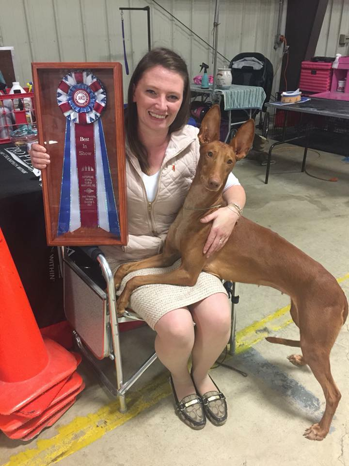 Summer & Grahm after their 3rd All Breed Best In Show win in just a few months!